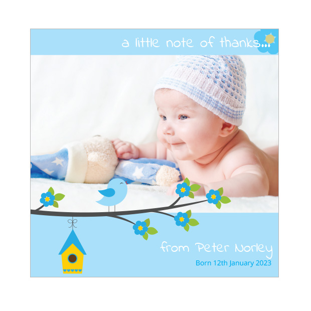 Baby Bird - Boy, baby thank you card for boys - square format