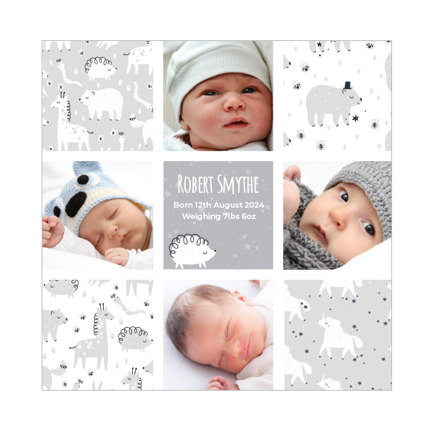 Animal Dreams - Boy, baby thank you cards for boys