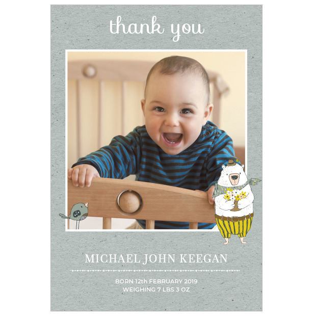 Bear Picnic, baby thank you cards for boys
