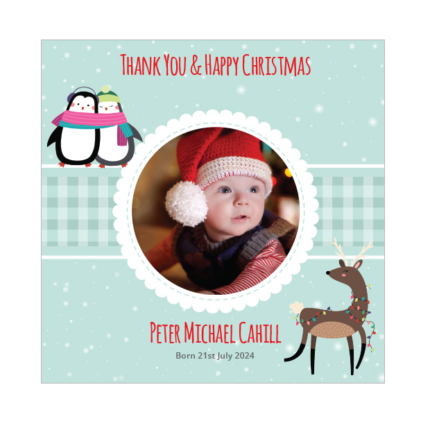 Cold Outside - Christmas themed Baby Thank You Card by Cedar Tree Ireland